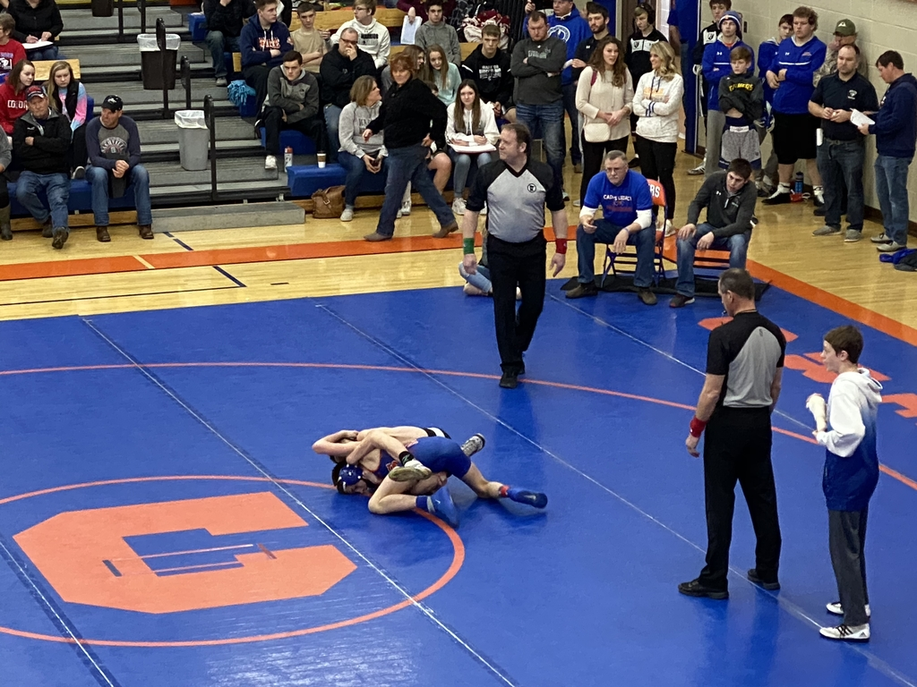 Section wrestling Canby